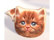 3D Polštářek Rezavá Kočička